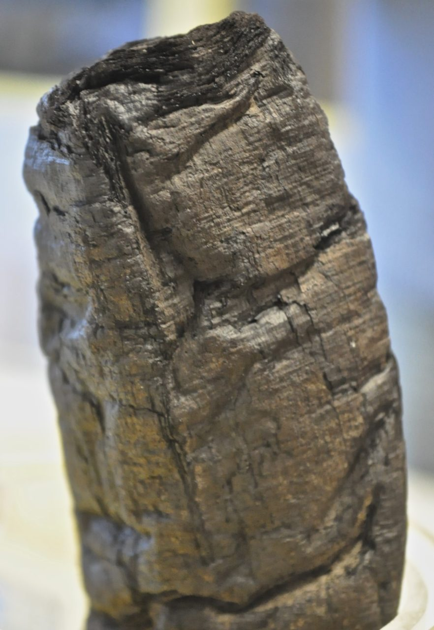 A charred scroll excavated at Herculaneum. (Image courtesy of Emmanuel Brun at the European Synchrotron Radiation Facility.)